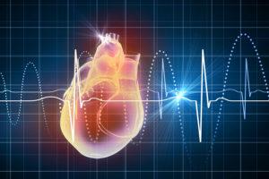 Heart Rate Calculator Java Code